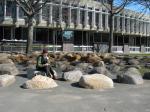 Harvard boulder seats (2)